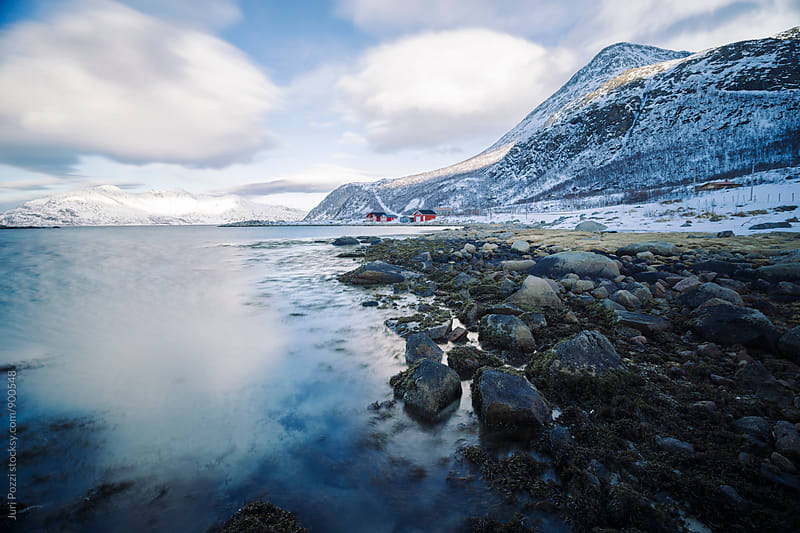 nordic village on a fjord by Juri Pozzi for Stocksy United