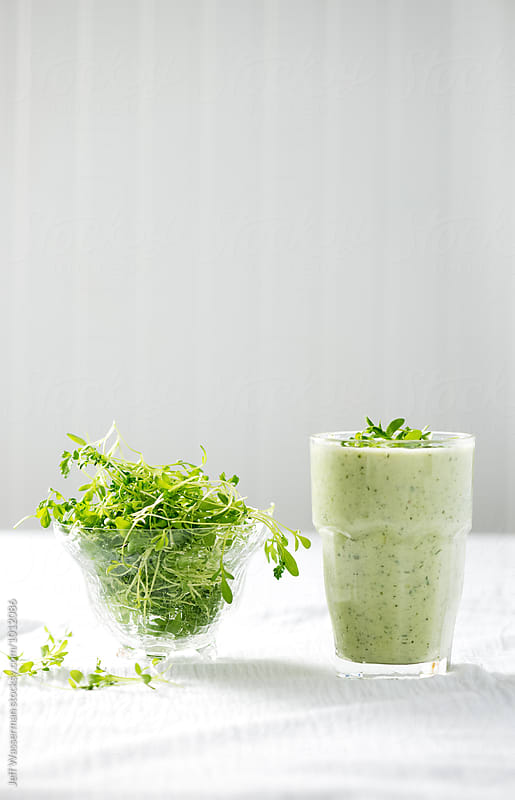 Cold Summer Cucumber Yogurt Soup with Micro-Greens by Jeff Wasserman for Stocksy United