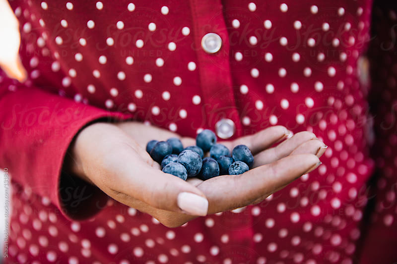 woman holding blueberries in her hand by Shaun Robinson for Stocksy United