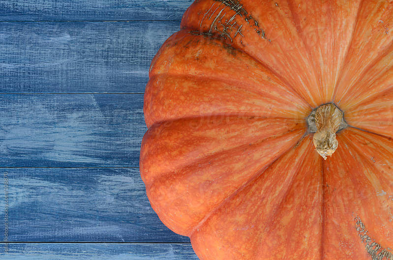 Pumpkin on a Blue background by Julie Rideout for Stocksy United