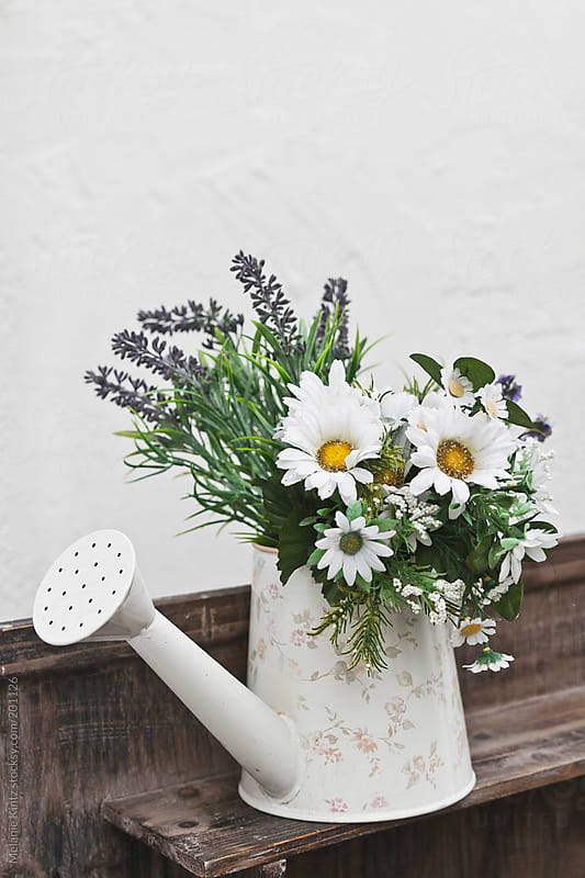 Bouquet of flowers in a watering can by Melanie Kintz for Stocksy United
