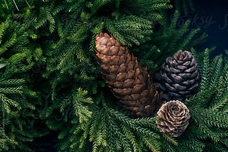 Detail of Christmas wreath with pine cones by Kristin Duvall for Stocksy United