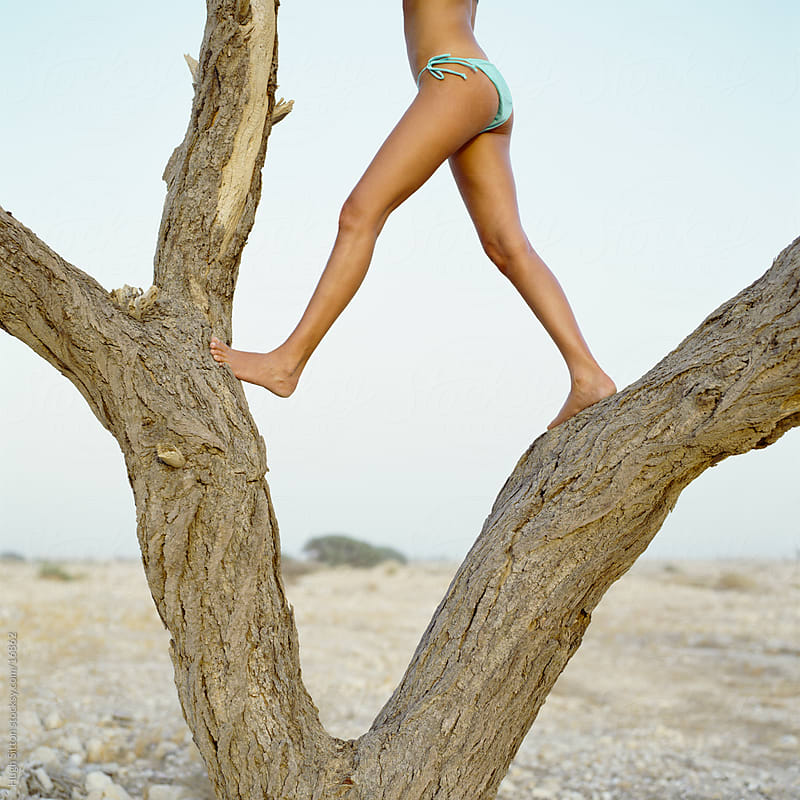 Woman climbing a tree in the desert by Hugh Sitton for Stocksy United