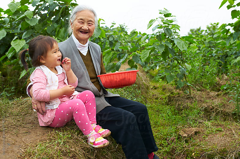 little asian girl picking mulberry outdoor with her great grandmother by Bo Bo for Stocksy United