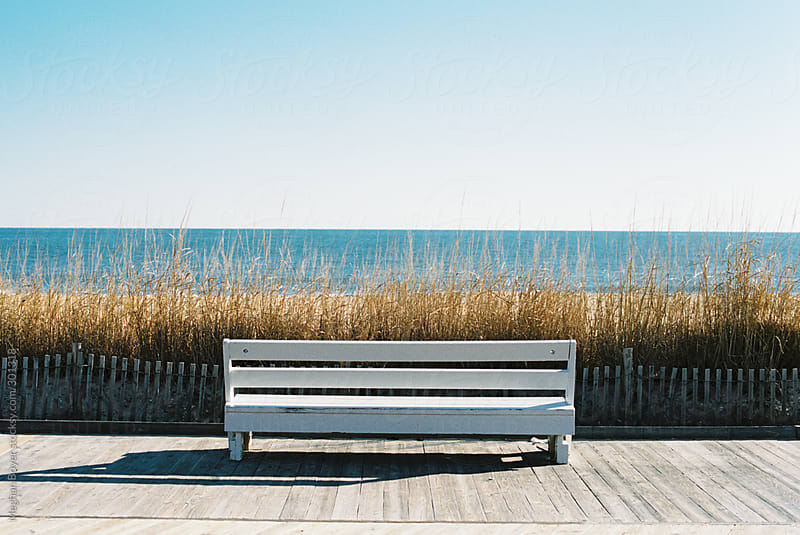 beach bench by Meghan Boyer for Stocksy United