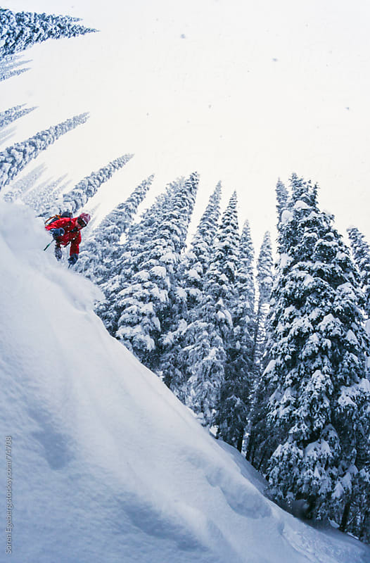 Man tree skiing powder snow in winter mountains of Rogers Pass,  by Søren Egeberg Photography for Stocksy United