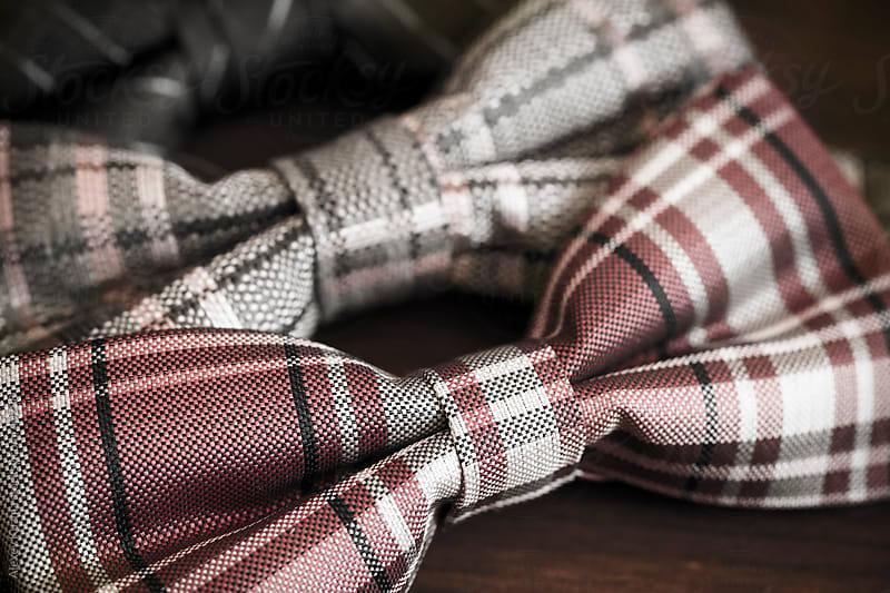 bow tie by Alexey Kuzma for Stocksy United
