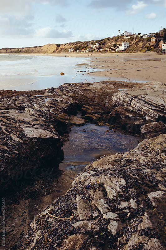 Tide pool at the beach  by Curtis Kim for Stocksy United