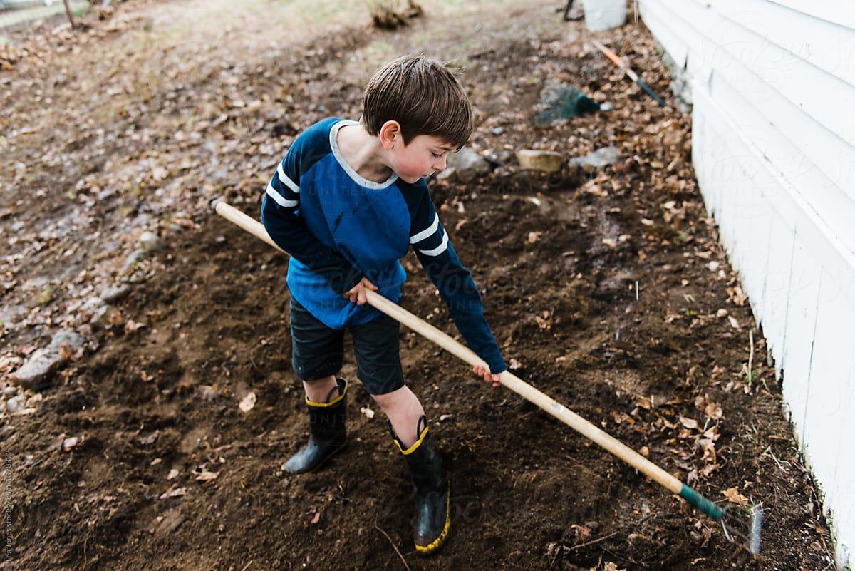 Little Boy Working On Garden Patch | Stocksy United