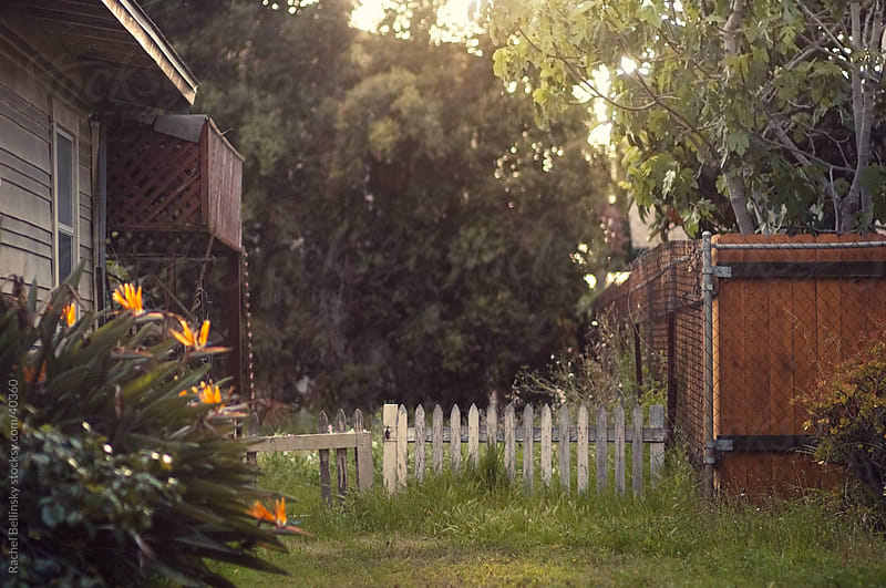 Rustic fence in suburban California by Rachel Bellinsky for Stocksy United