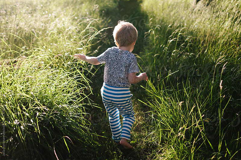 Small child walks on a path in tall grass. by Julia Forsman for Stocksy United