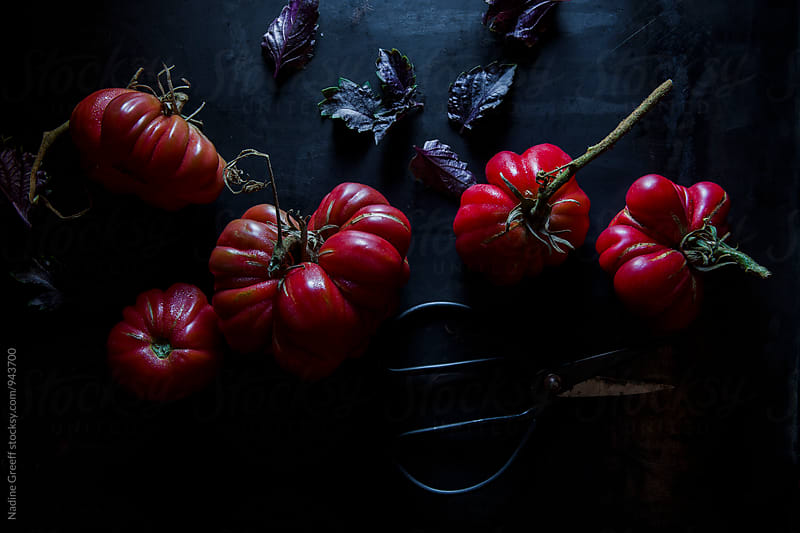 Heirloom tomatoes and purple basil  by Nadine Greeff for Stocksy United
