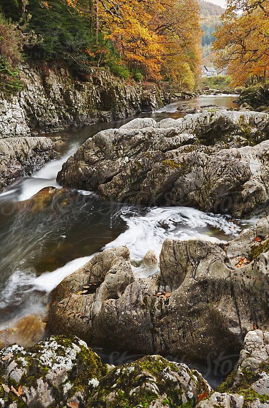 Afon Llugwy in Autumn. Betws y Coed, Wales, UK. by Liam Grant for Stocksy United