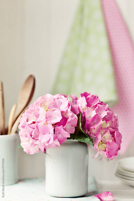 Hydrangeas in a vase by Ruth Black for Stocksy United
