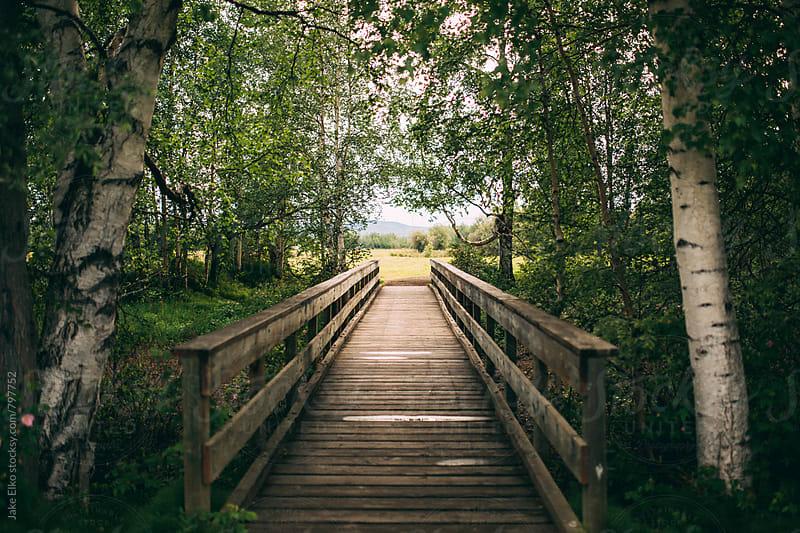 Bridge to Far by Jake Elko for Stocksy United