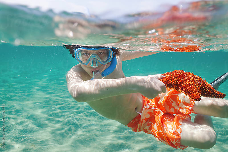 Boy with Starfish underwater by Dana Pugh for Stocksy United