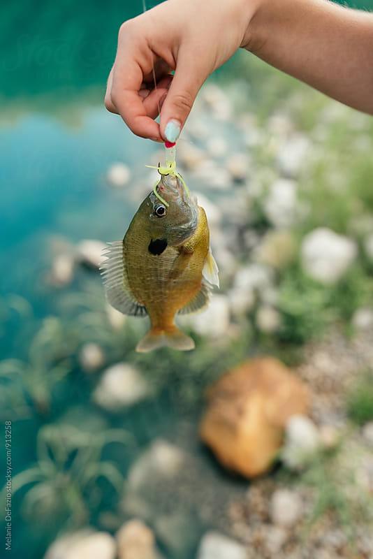 Fishing by Melanie DeFazio for Stocksy United