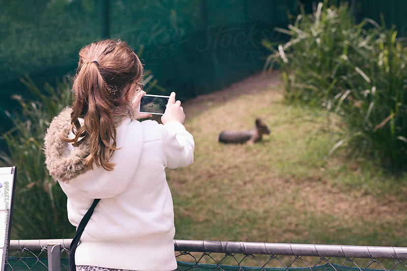 shooting wallabies at the zoo by Gillian Vann for Stocksy United