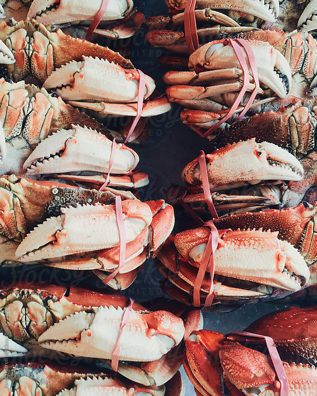 Fresh Crabs at Pike Place Market in Seattle, Washington by Jared Harrell for Stocksy United