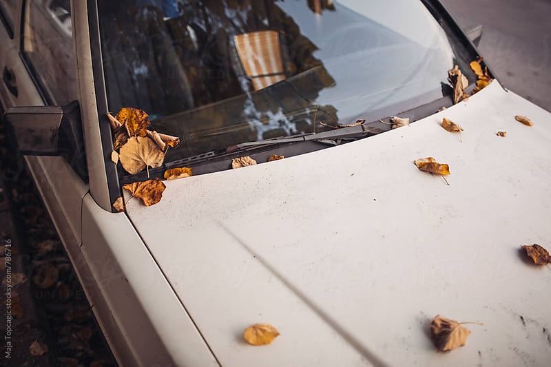 White vintage car covered with autumn leaves by Maja Topcagic for Stocksy United