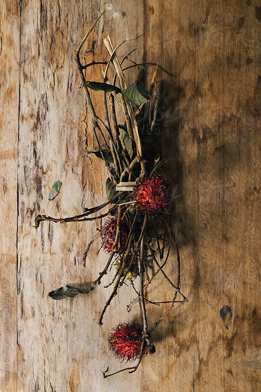 Rambutan Fruit of Indonesia by Nemanja Glumac for Stocksy United