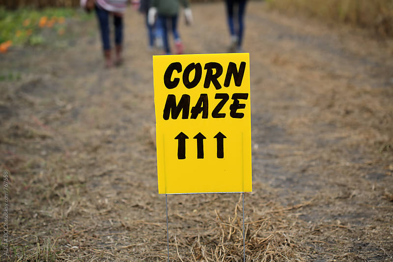 A Bright Yellow Sign Pointing To A Corn Maze Up Ahead by ALICIA BOCK for Stocksy United