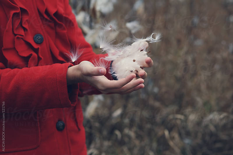 Milk Weed Blowing In The Wind Out Of A Girl's Hands by ALICIA BOCK for Stocksy United
