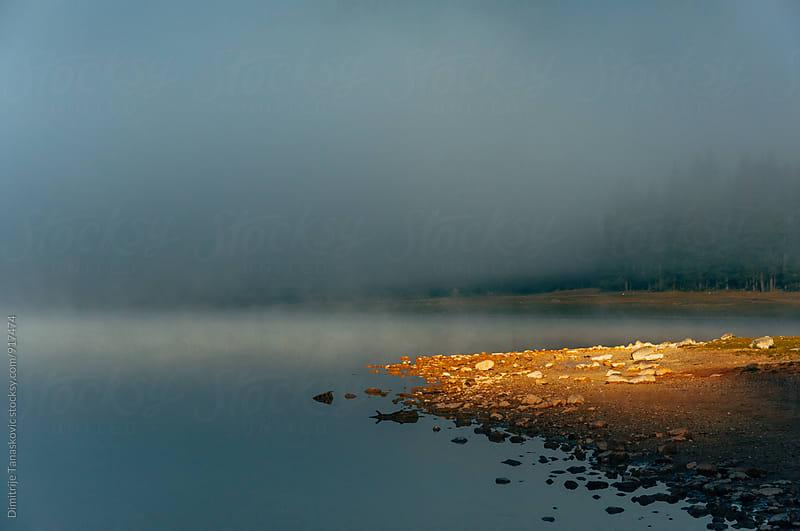 Morning on the lake by Dimitrije Tanaskovic for Stocksy United