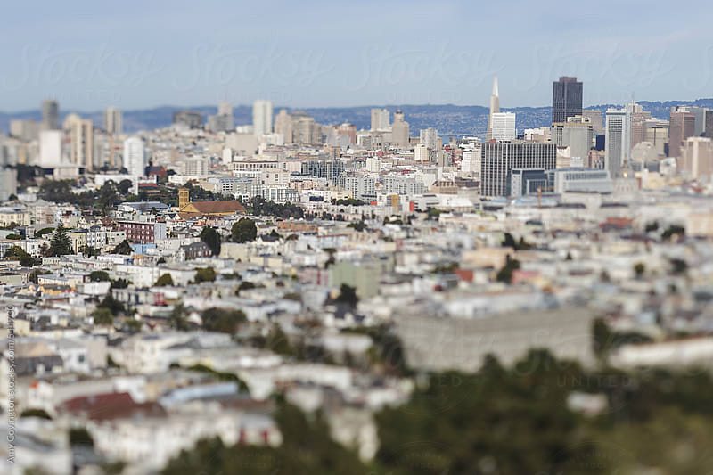 View of San Francisco from above by Amy Covington for Stocksy United