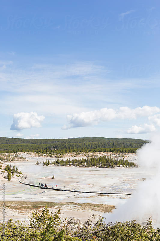 Boardwalk in Norris Geyser Basin, Yellowstone National Park by michela ravasio for Stocksy United