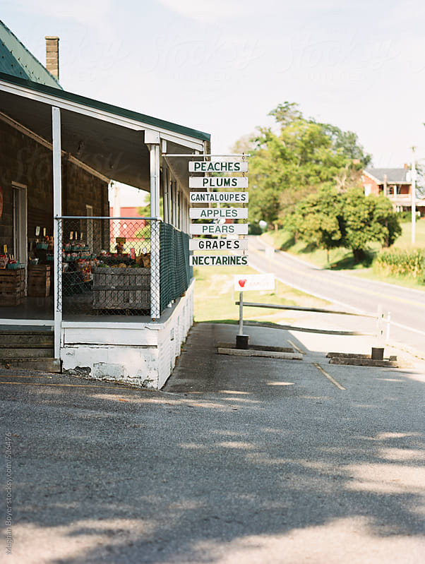 Sunny Farm Stand by Meghan Boyer for Stocksy United
