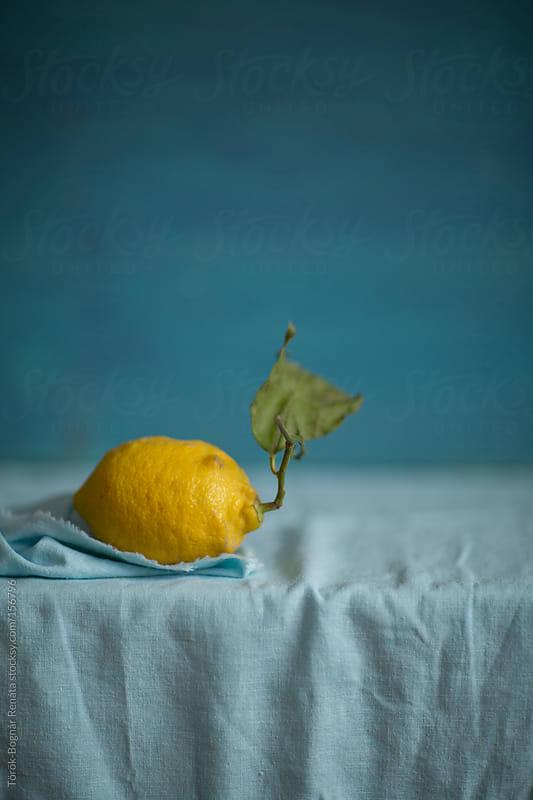 Lemon by Török-Bognár Renáta for Stocksy United