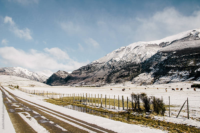 A road cutting through remote farm land on a sunny winter day by Justin Mullet for Stocksy United
