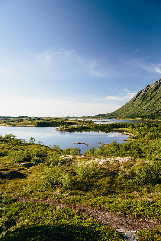 Lofoten Landscape by Agencia for Stocksy United