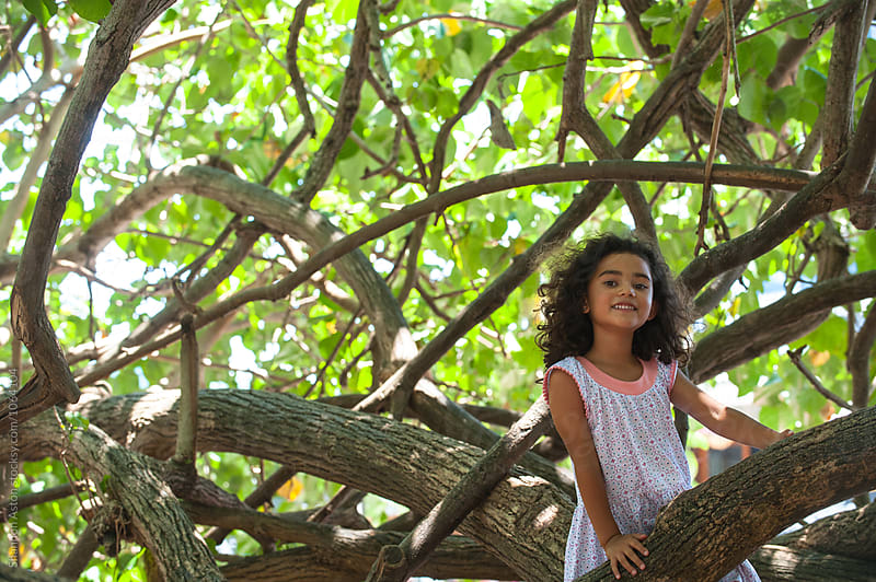 Girl plays in large trees by Shannon Aston for Stocksy United