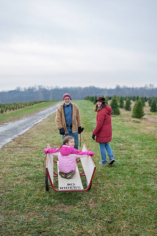 Christmas Tree Hunting: Three Generations Search for The Best Co by Brian McEntire for Stocksy United