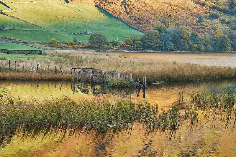 Golden reflections. Brothers Water, Cumbria, UK. by Liam Grant for Stocksy United