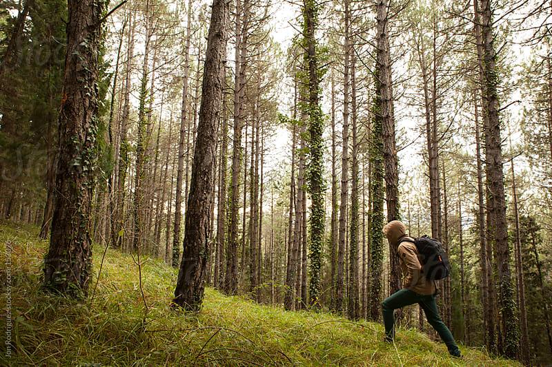 A walk in the forest, Aranguren valley, Navarra, Spain by Jon Rodriguez for Stocksy United