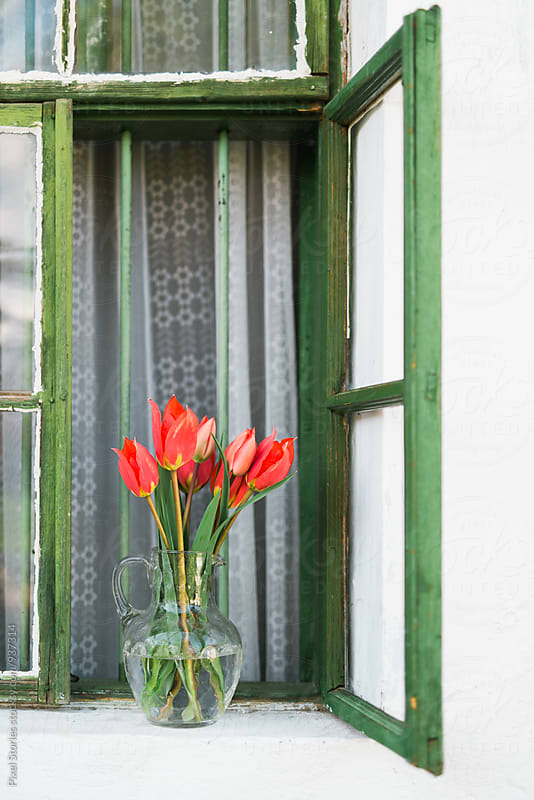 Vase with red tulips on a windowsill by Pixel Stories for Stocksy United