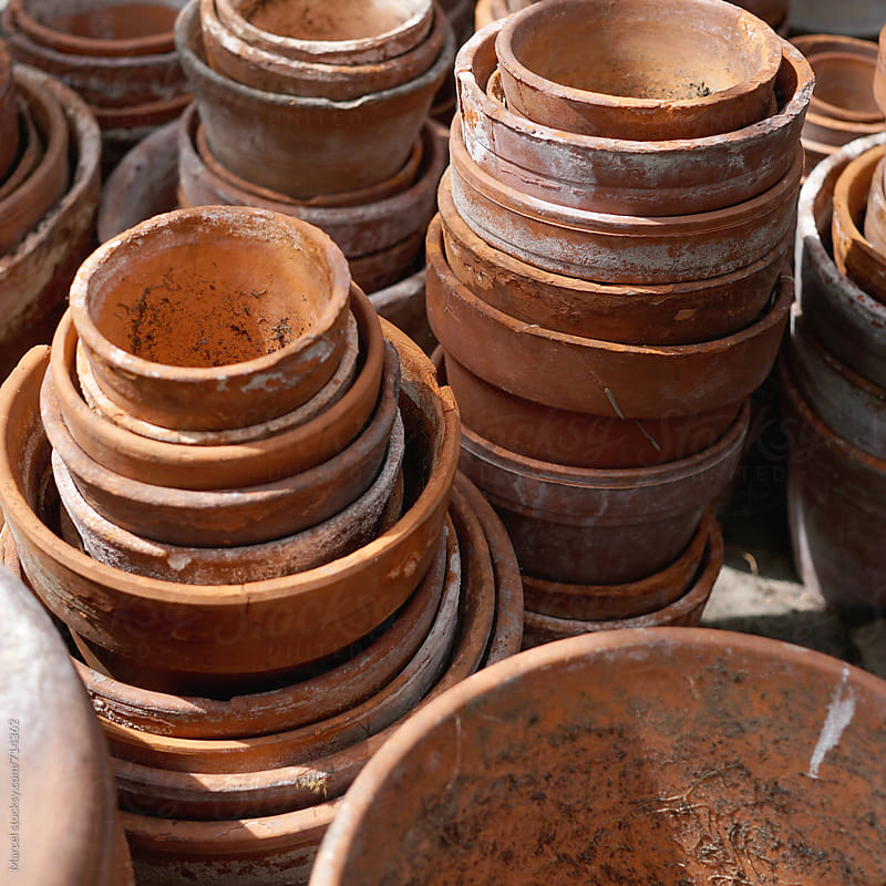 Used terracotta pots in a greenhouse by Marcel for Stocksy United