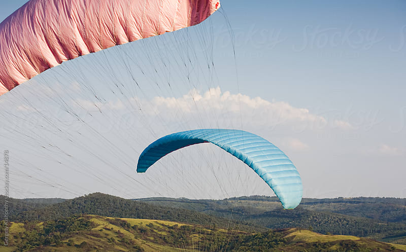 Getting on the wind. by Gergely Kishonthy for Stocksy United