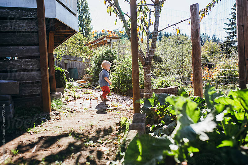 A Toddler boy stands in a garden in the bright sun by Amanda Voelker for Stocksy United