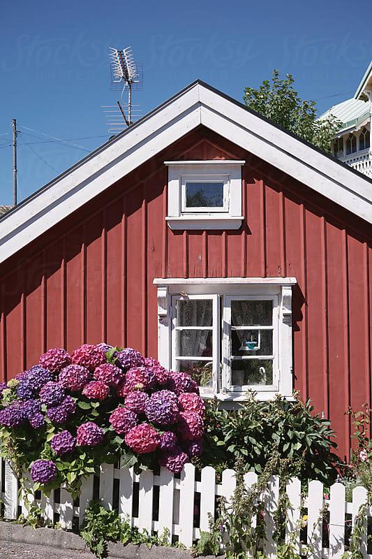 Cute little Scandinavian house in summer by Marcel for Stocksy United