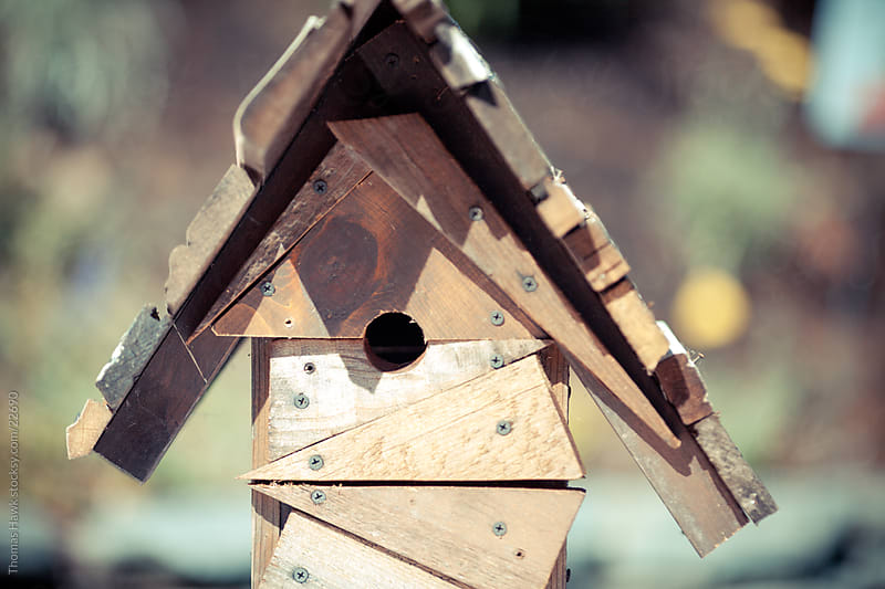 bird house by Thomas Hawk for Stocksy United