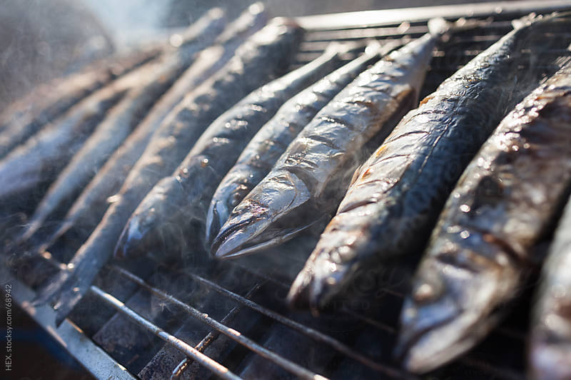 Grilled Fish . Seafood Close up by HEX. for Stocksy United