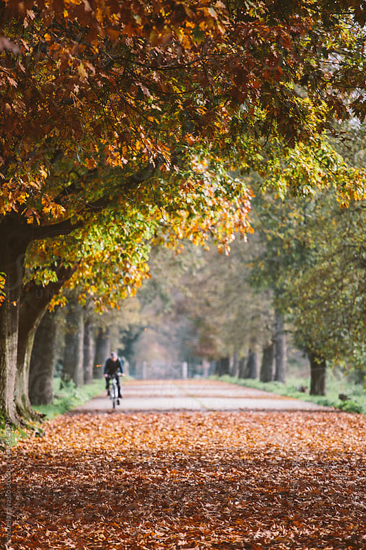 A man enjoying the park with bicycles, in autumn. by michela ravasio for Stocksy United