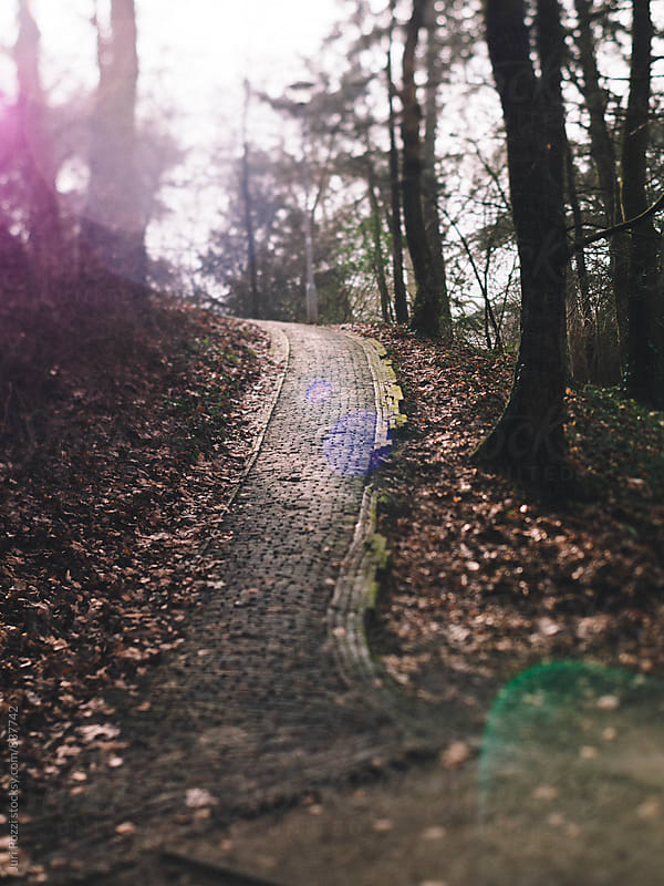 stone paved trail in a park by Juri Pozzi for Stocksy United