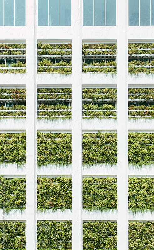 Vertical Garden on High-Rise Building by VISUALSPECTRUM for Stocksy United
