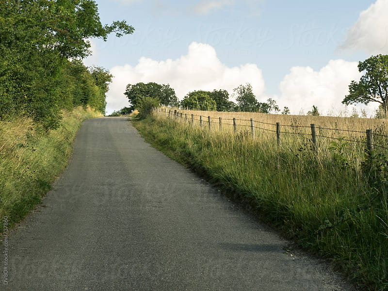 A back road or country lane The Cotswolds region of the English Countryside in Summer by DV8OR for Stocksy United