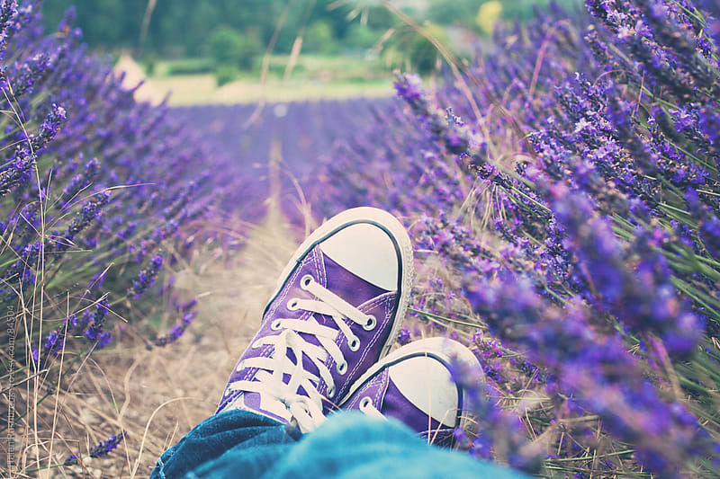 Purple sneakers among lavender by Helen Rushbrook for Stocksy United